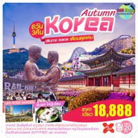 AUTUMN KOREA 6D