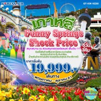 เกาหลี FUNNY SPRINGS SHOCK PRICE