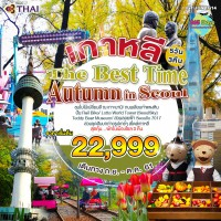 เกาหลี THE BEST TIME AUTUMN IN SEOUL