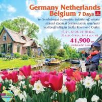 เยอรมัน เนเธอร์แลนด์ เบลเยี่ยม Tulip Festival