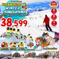 HOKKAIDO WINTER PANORAMA 5 DAYS 3 NIGHT