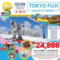 TOKYO FUJI  ICY SNOWY 5D3N